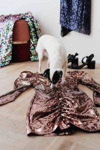 Kaboompics - colored sequin dresses and boots lie on a wooden parquet, blue dress hang on the white wall, White Dog