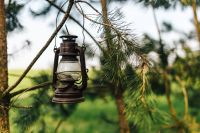 Kaboompics - Old paraffin lamp on a tree