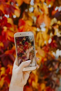 Kaboompics - The woman takes a picture of the autumn leaves with her phone