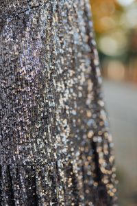 Kaboompics - Sequin Dress