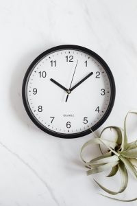Kaboompics - Clock & Tillandsia on White Background