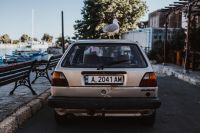 Kaboompics - Seagull on a car roof