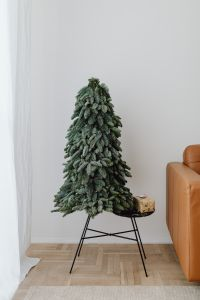 Kaboompics - Christmas tree with a small gift