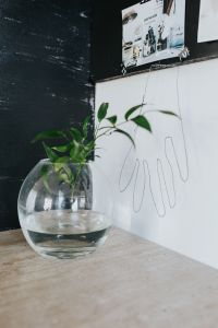 Kaboompics - Home decor with green plants