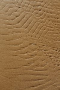 Kaboompics - The abstract line designed by water up on sand texture
