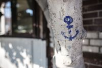 Kaboompics - Anchor drawn on the tree, Nessebar, Bulgaria