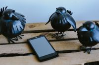 Kaboompics - Little black plastic birds with a smartphone on a shelf