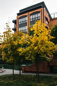 Kaboompics - Autumn threes and brick building