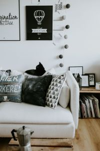 Contemporary black-and-white home decor