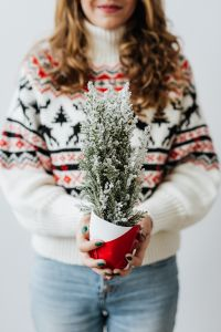 Kaboompics - Woman in a white Christmas sweater holds cypress