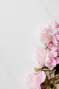 Kaboompics - Peonies on white marble background