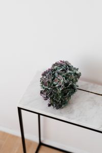 Kaboompics - Hydrangea on a Marble Table, White Background