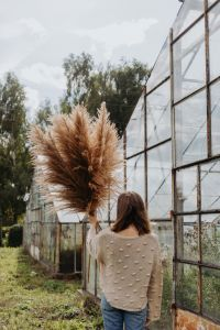 Kaboompics - The woman is holding the pampas grass
