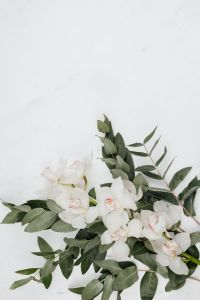 White Cymbidium Orchid flower with eucalyptus on marble