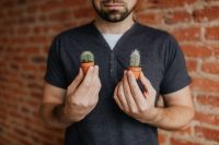 Kaboompics - Miniature cacti in clay pots