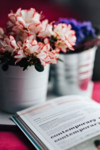 Kaboompics - Pink and purple flowers with a book