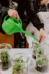 Kaboompics - Male hand pouring water from green watering can