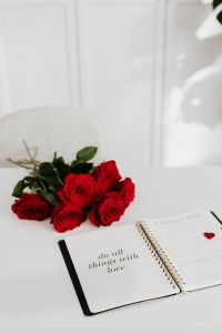 Kaboompics - Weekly Planner - Valentines - Red Roses