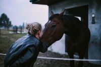 Woman greeting with a brown horse
