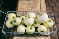 Healthy green apples in the basket