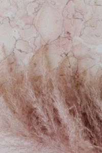 Kaboompics - Pink marble background and pampas grass