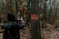 Kaboompics - The woman takes a picture of the sign on the tree