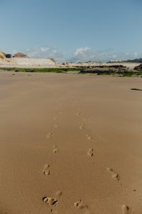 Kaboompics - Footprints on a sandy beach, Portugal