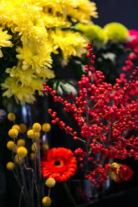 Kaboompics - Red rowan with a colourful arrangement of flowers