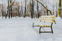 Yellow bench a wintery park