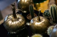 Kaboompics - Golden ornamental pumpkins with cactuses
