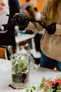 Kaboompics - Woman taking a photo of terrarium with plants