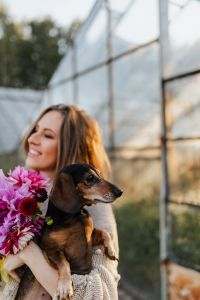 A woman with beautiful colorful dahlia flowers, holding in her hands a dachshund dog