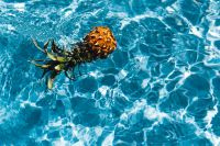 Baby Pineapple in a swimming pool
