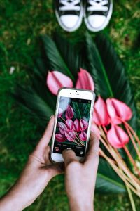 Kaboompics - Woman taking a photo of Anthurium and Sago Palm