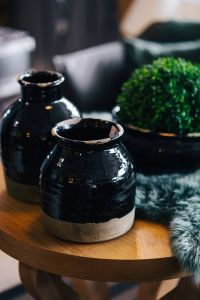 Kaboompics - Green plant in a black pot with black jars and a soft cyan rug