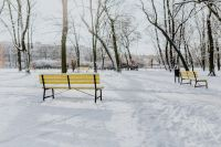 Yellow benches a wintery park