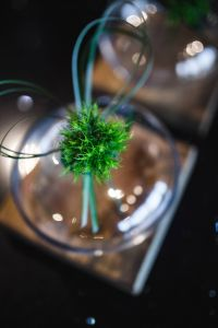 Kaboompics - Little grass bundle with a ribbon in a glass jar