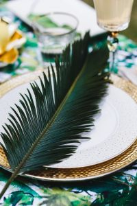 Kaboompics - Sago Palm Leaf on a Plate