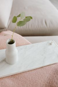 Kaboompics - White marble tray with vase with eucalyptus branch