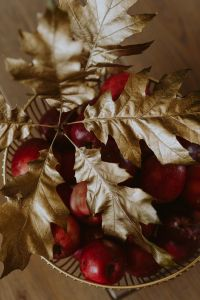 Kaboompics - Red apples and golden oak leaves
