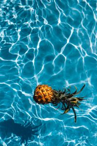 Kaboompics - Baby Pineapple in a swimming pool