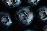 Kaboompics - Blueberries Backgrounds