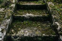 Kaboompics - Moss covered stairs