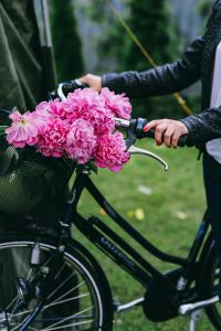 Kaboompics - Woman holding a bicycle with beautiful pink flowers in the basket