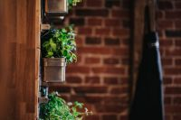 Fancy interior with a red brick wall and green plants