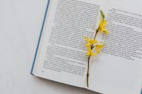 Kaboompics - Book & spring flowers