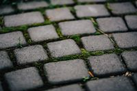 Kaboompics - Cobblestone path close-up