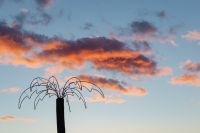 Kaboompics - A fake palm tree on a background of pink clouds
