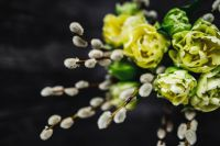 Kaboompics - Close-ups of little yellow flowers and catkins in a glass jar