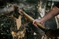 Kaboompics - Chopping wood in the forest